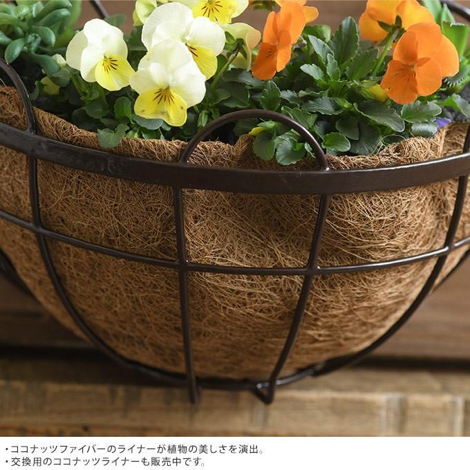 アイアン 壁掛けプランター ココヤシマット付き 幅30cm ブラック 洋風 ウォールプランター ベランダ バルコニー|gardenyouhin|03
