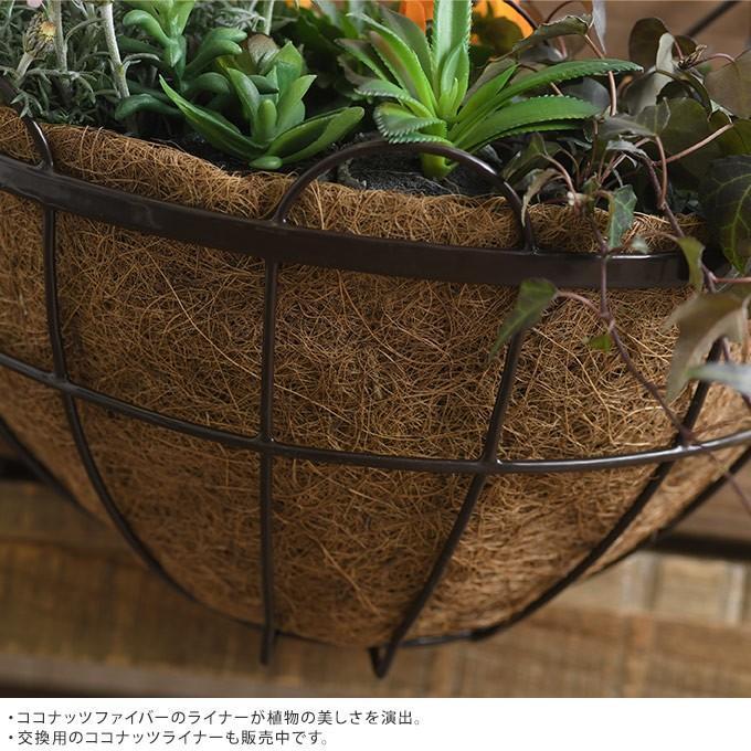 アイアン 壁掛けプランター ココヤシマット付き 幅35cm ブラック  洋風 ウォールプランター ベランダ バルコニー|gardenyouhin|03
