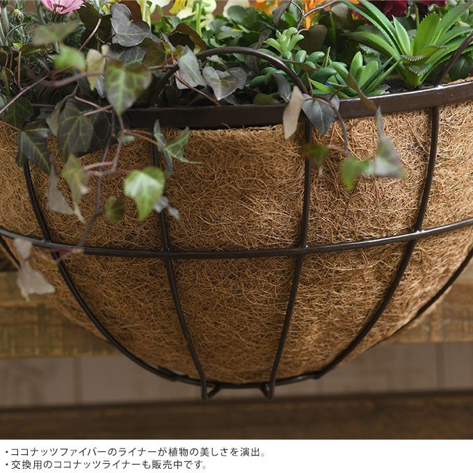アイアン 壁掛けプランター ココヤシマット付き 幅40cm ブラック 洋風 ウォールプランター ベランダ バルコニー|gardenyouhin|03
