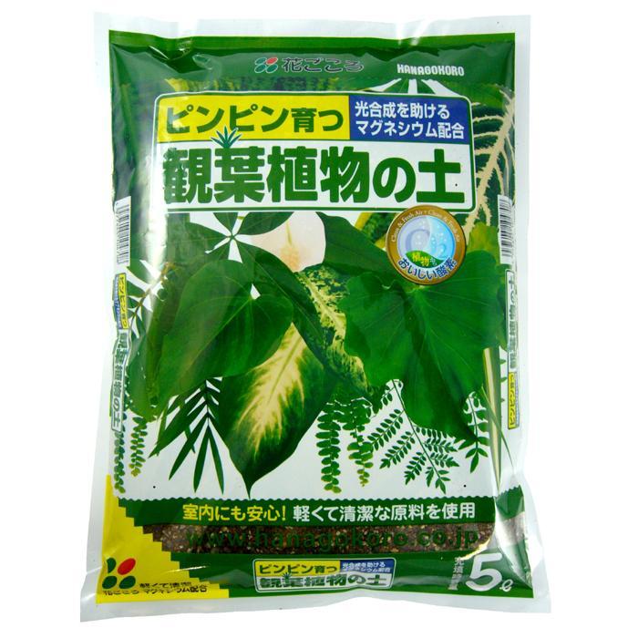 人気 花ごころ 観葉植物の土 5L 人気 おすすめ