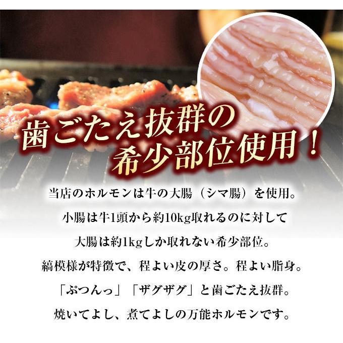 ホルモン 訳あり 送料無 肉 焼肉 お中元 お取り寄せ グルメ ギフト 食品 ポイント消化 シマチョウ てっちゃん もつ 味噌 タレ 牛肉 1kg (500g×2) geki-niku 11