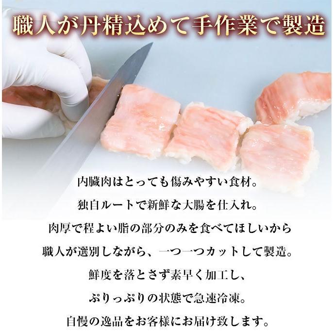 ホルモン 訳あり 送料無 肉 焼肉 お中元 お取り寄せ グルメ ギフト 食品 ポイント消化 シマチョウ てっちゃん もつ 味噌 タレ 牛肉 1kg (500g×2) geki-niku 12