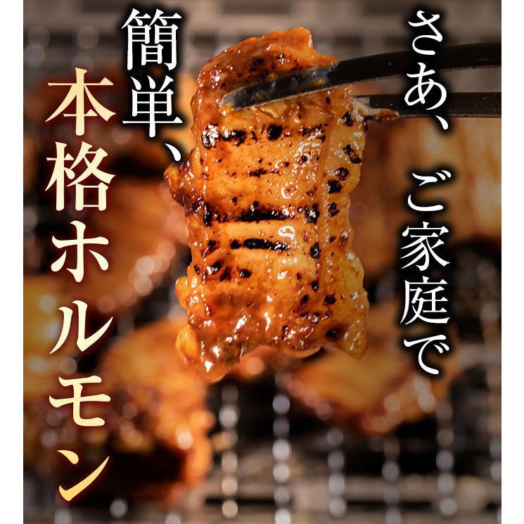 ホルモン 訳あり 送料無 肉 焼肉 お中元 お取り寄せ グルメ ギフト 食品 ポイント消化 シマチョウ てっちゃん もつ 味噌 タレ 牛肉 1kg (500g×2) geki-niku 20
