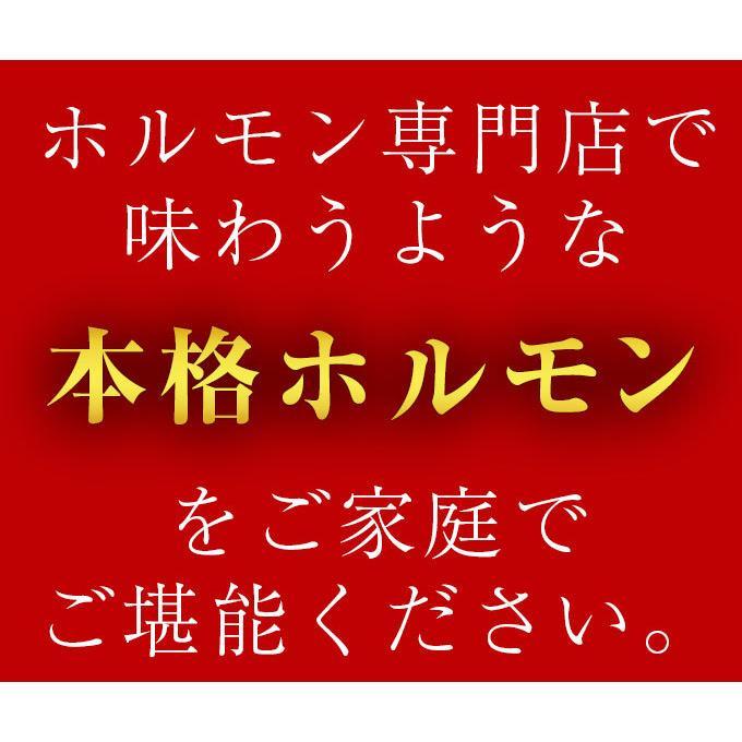 ホルモン 訳あり 送料無 肉 焼肉 お中元 お取り寄せ グルメ ギフト 食品 ポイント消化 シマチョウ てっちゃん もつ 味噌 タレ 牛肉 1kg (500g×2) geki-niku 05