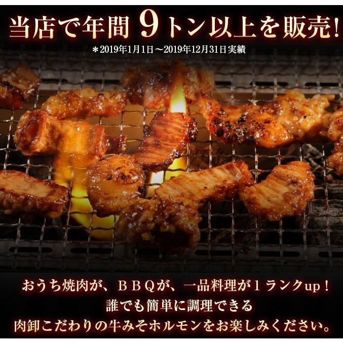 ホルモン 訳あり 送料無 肉 焼肉 お中元 お取り寄せ グルメ ギフト 食品 ポイント消化 シマチョウ てっちゃん もつ 味噌 タレ 牛肉 1kg (500g×2) geki-niku 09