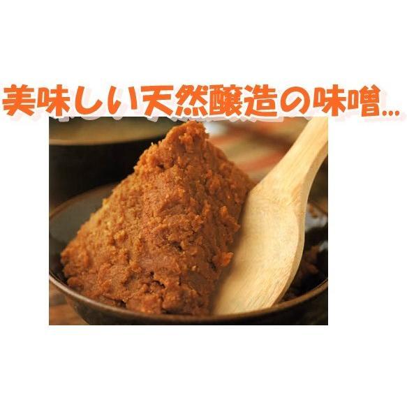 山印醸造 味噌 いろり ×1ケース 1kg×10袋入り 美味しい味噌 こだわりの味噌 gekiyasuitiba-asia