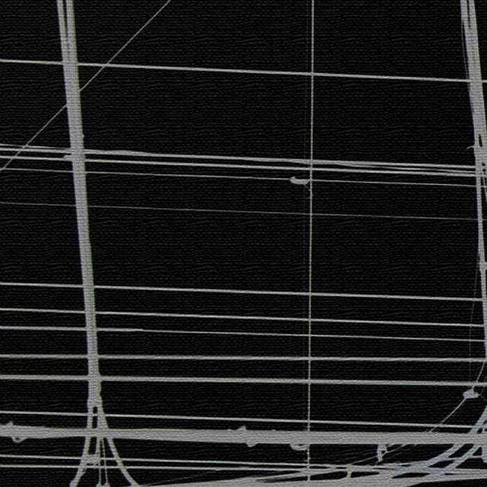 秦義之 ファブリックパネル モノクロ アートパネル Yoshiyuki Hata XLサイズ 100cm×100cm lib-4122293s9