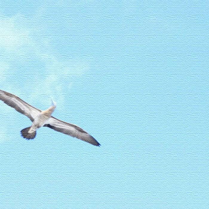 うみカメラマン むらいさち ファブリックパネル 青空 アートパネル Sachi Murai XLサイズ 100cm×100cm lib-4122328s9