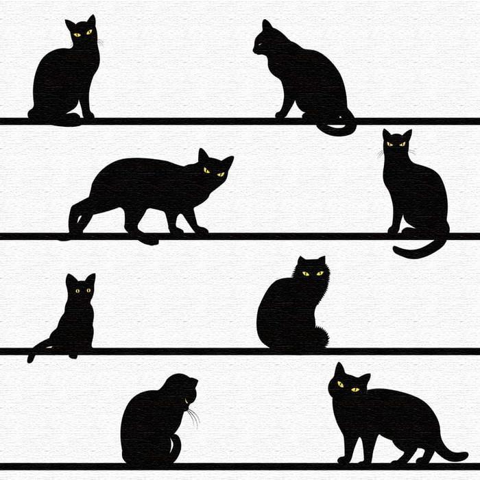 黒猫 アートボード アートボード アートパネル アートデリ XLサイズ 100cm×100cm lib-5109086s4