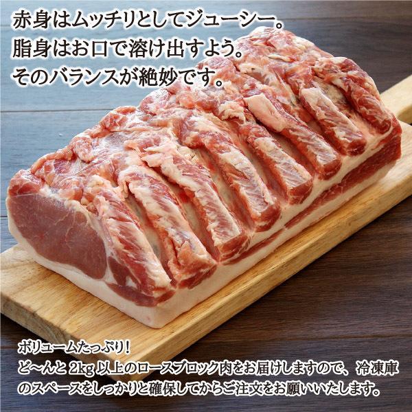 元気豚 ロースブロック 不定貫(2kg以上) genkibuta 05