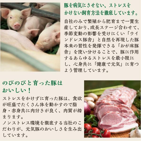 元気豚 ロースブロック 不定貫(2kg以上) genkibuta 09