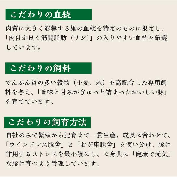 元気豚 ロースブロック 不定貫(2kg以上) genkibuta 10