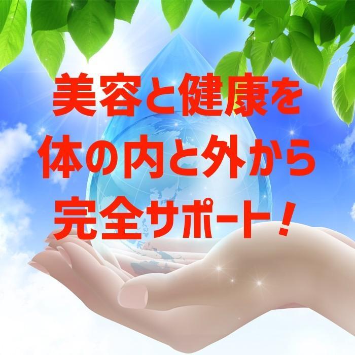 【3個セット】MILACK21 電子水生成器 ミラックトゥエンティワン genkijapan 02
