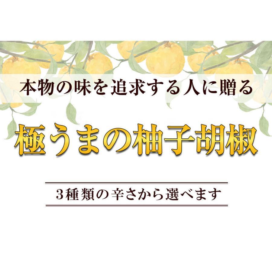 佐賀県七山産の柚子胡椒80g(送料無料)2袋購入でもう1袋プレゼント 3つの辛さから選べる ポイント消化 お試し ゆずこしょう 柚子こしょう genkiya6090 02
