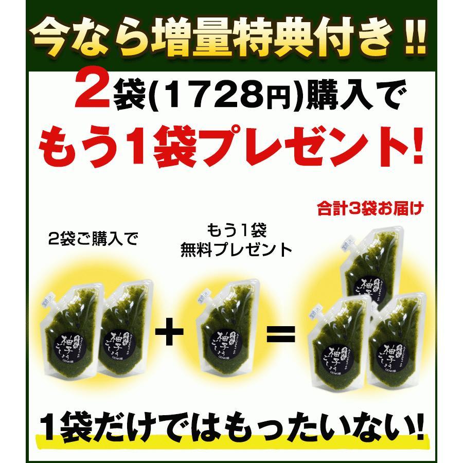 佐賀県七山産の柚子胡椒80g(送料無料)2袋購入でもう1袋プレゼント 3つの辛さから選べる ポイント消化 お試し ゆずこしょう 柚子こしょう genkiya6090 15