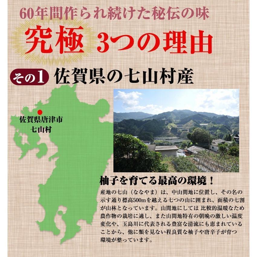 佐賀県七山産の柚子胡椒80g(送料無料)2袋購入でもう1袋プレゼント 3つの辛さから選べる ポイント消化 お試し ゆずこしょう 柚子こしょう genkiya6090 04