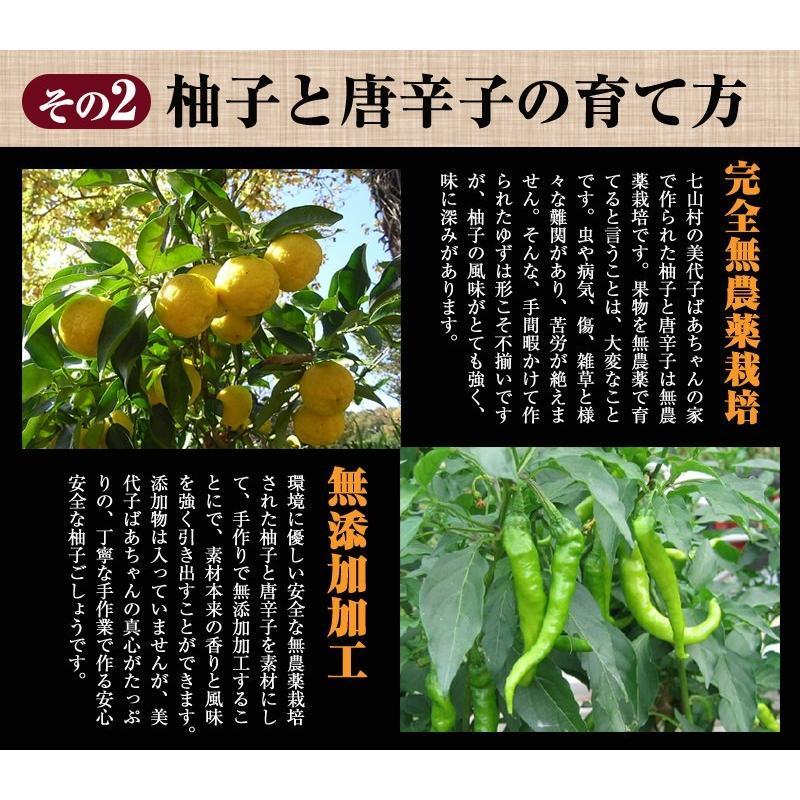 佐賀県七山産の柚子胡椒80g(送料無料)2袋購入でもう1袋プレゼント 3つの辛さから選べる ポイント消化 お試し ゆずこしょう 柚子こしょう genkiya6090 05