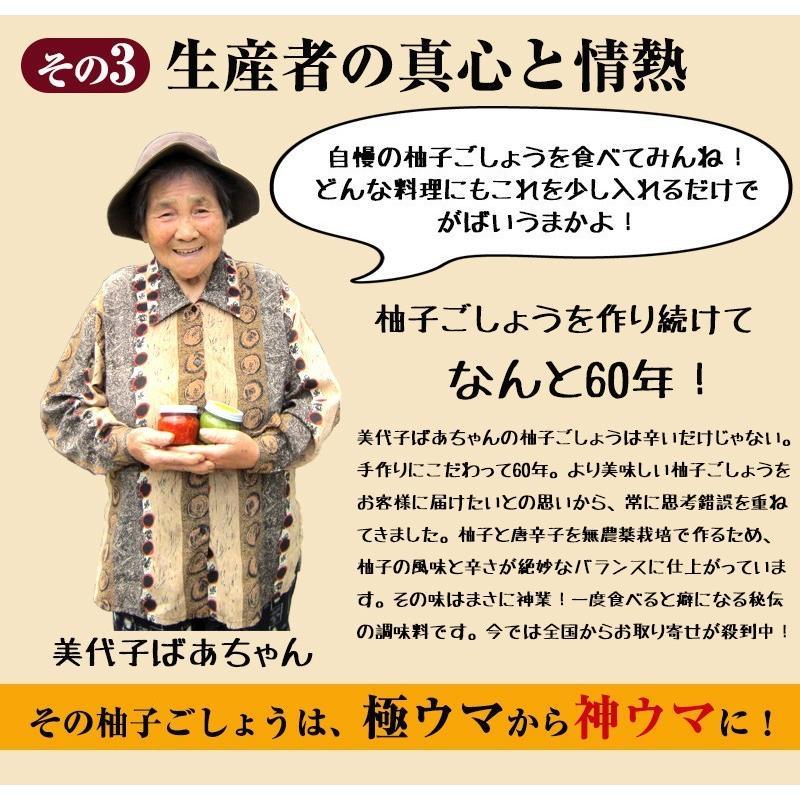 佐賀県七山産の柚子胡椒80g(送料無料)2袋購入でもう1袋プレゼント 3つの辛さから選べる ポイント消化 お試し ゆずこしょう 柚子こしょう genkiya6090 06