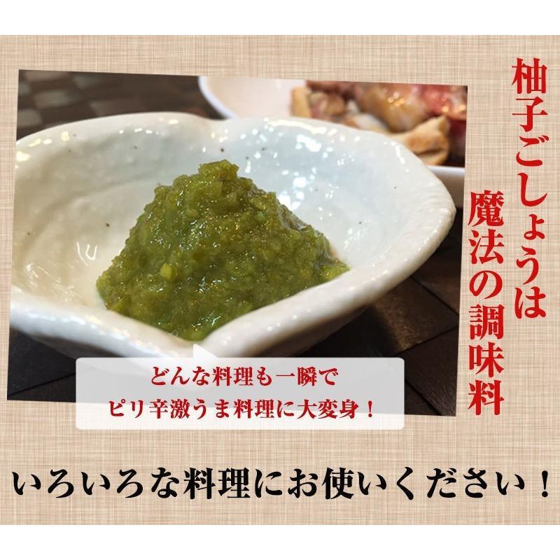 佐賀県七山産の柚子胡椒80g(送料無料)2袋購入でもう1袋プレゼント 3つの辛さから選べる ポイント消化 お試し ゆずこしょう 柚子こしょう genkiya6090 08