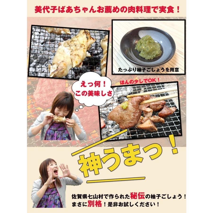 佐賀県七山産の柚子胡椒80g(送料無料)2袋購入でもう1袋プレゼント 3つの辛さから選べる ポイント消化 お試し ゆずこしょう 柚子こしょう genkiya6090 10