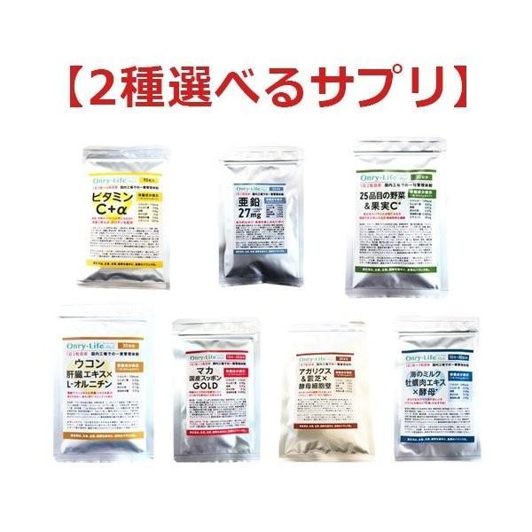 2種選べる国産サプリ 亜鉛マカスッポンゴールド ビタミンC アガリクス ウコン肝臓エキス 25品目の野菜果実 牡蠣肉エキス 送料無料|ggtokyo