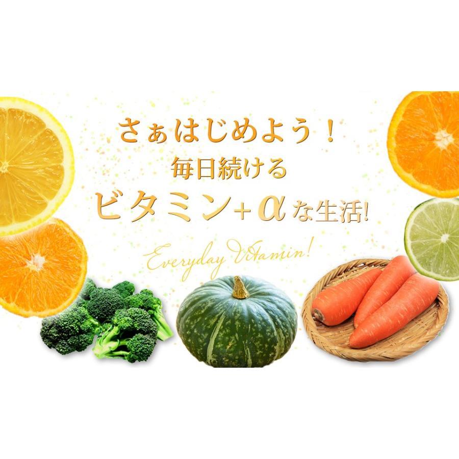 サプリ サプリメント ビタミンCサプリ (30日分/ 1か月分 ) ビタミンC+α Only Life Style 健康食品 ビタミンC ビタミン ビタミンB2 国産|ggtokyo|12