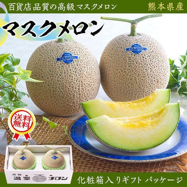 マスクメロン 2玉(1.4kg×2玉) 合計2.8kg・贈答用「果物の王様」百貨店品質の高級品・ギフト・送料無料 110412 gift-hiroba
