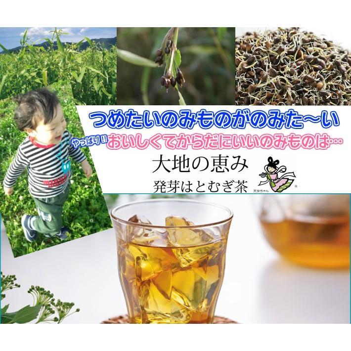 高千穂漢方研究所 発芽はとむぎ茶 業務用 88袋 高千穂漢方 発芽はとむぎ茶 ティーパック88袋入 厳選された原材料を使用しています。 お得パック|giftmiwa|03