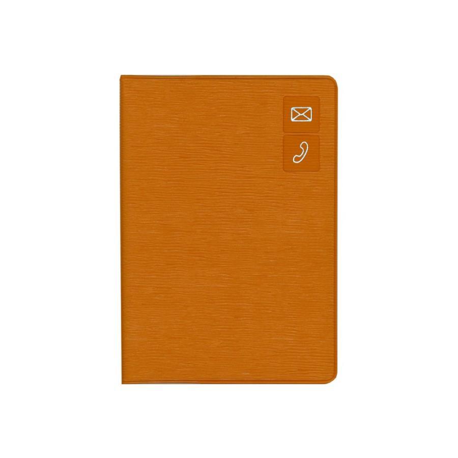 アドレス帳 手帳 ビジネス ダイゴー G6938  大きく書けるアドレス ベージュ giftnomura