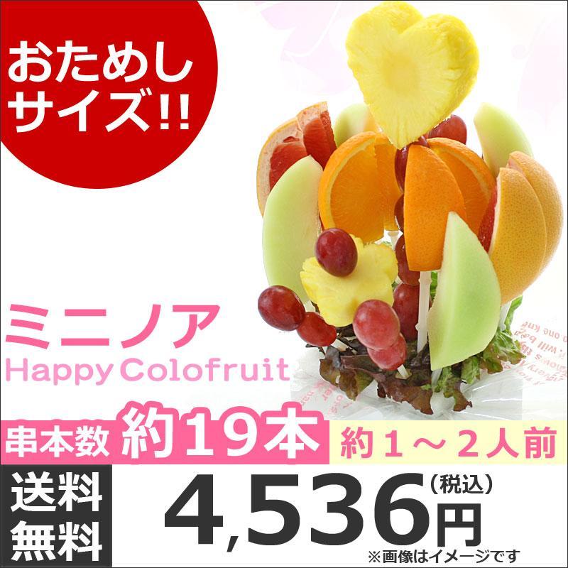 おためしハッピーカラフルーツ ミニノア 約1〜2人前【お届け日選択可能】|giftpark