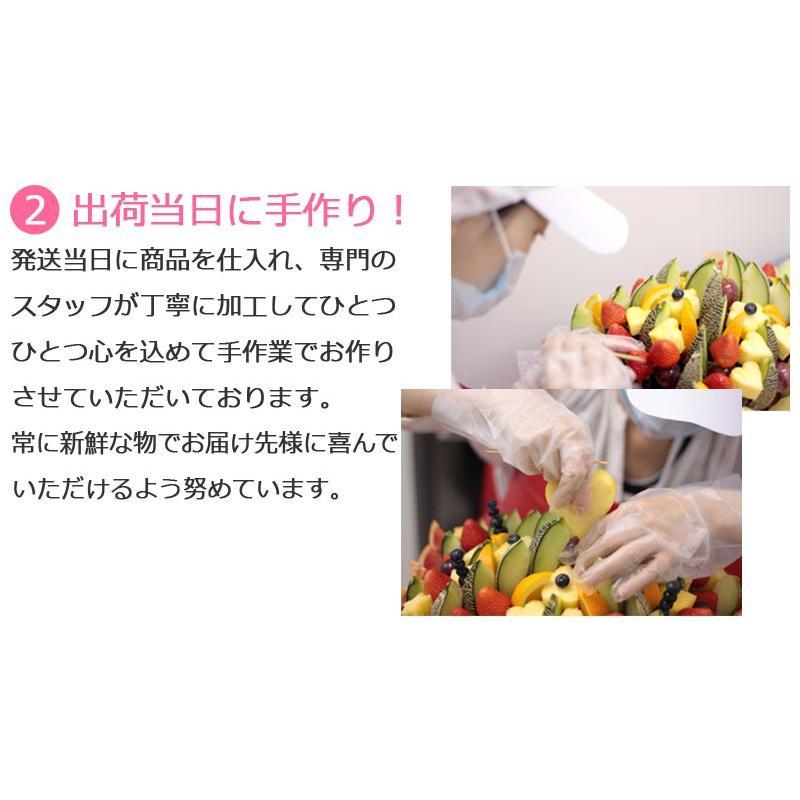 おためしハッピーカラフルーツ ミニノア 約1〜2人前【お届け日選択可能】|giftpark|03