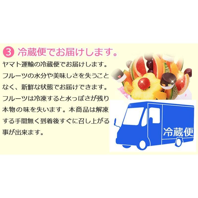 おためしハッピーカラフルーツ ミニノア 約1〜2人前【お届け日選択可能】|giftpark|04