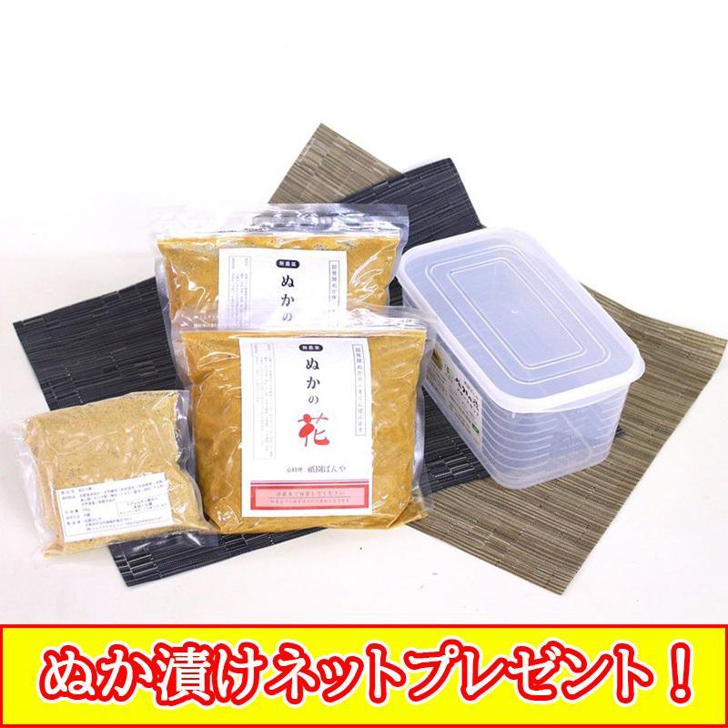 無農薬 オーガニック ぬかごと食べれる 発酵 ぬか床 ぬか漬け 簡単 作り方 ブック付 腸活 ぬかの花スタートセット小 送料無料