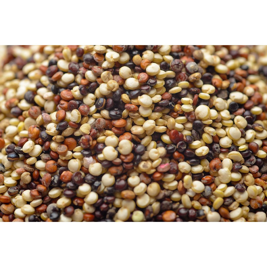 3色ミックスキヌア(粒)1.2 kg - ORGANIC & GLUTEN-FREE Royal Quinoa|globalmart|05