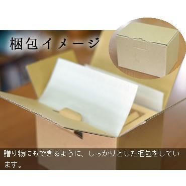 貯金箱 賽銭箱  さい銭箱 国産 木製 賽銭箱型貯金箱 格子付き|gm-shop|05