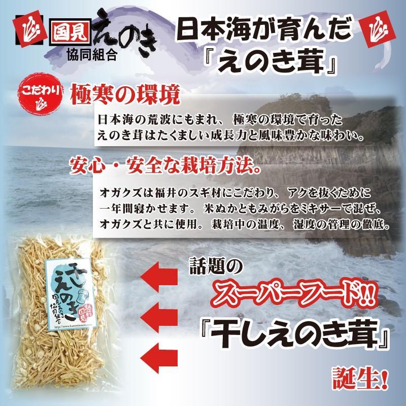 干しえのき 40g×3 越前国見産 無添加 驚きのパワー gochisou-otoriyose 02