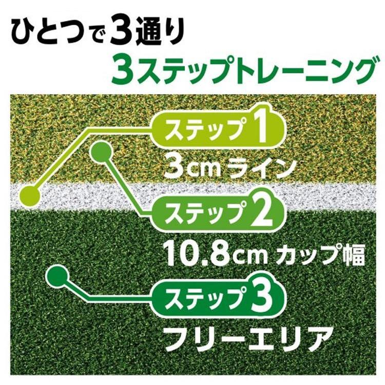DAIYA Golf 練習道具 ダイヤパターグリーン HD3230 人工芝 静音 TR-476 2020 remt|golfshop-champ|08
