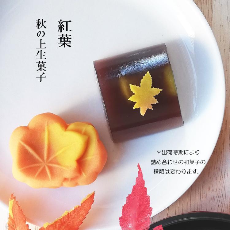 アマビエ様と秋の和菓子詰め合わせ 上生菓子 6個入り ギフト ご贈答用化粧箱入り*受注生産品|gomadaremochi|04
