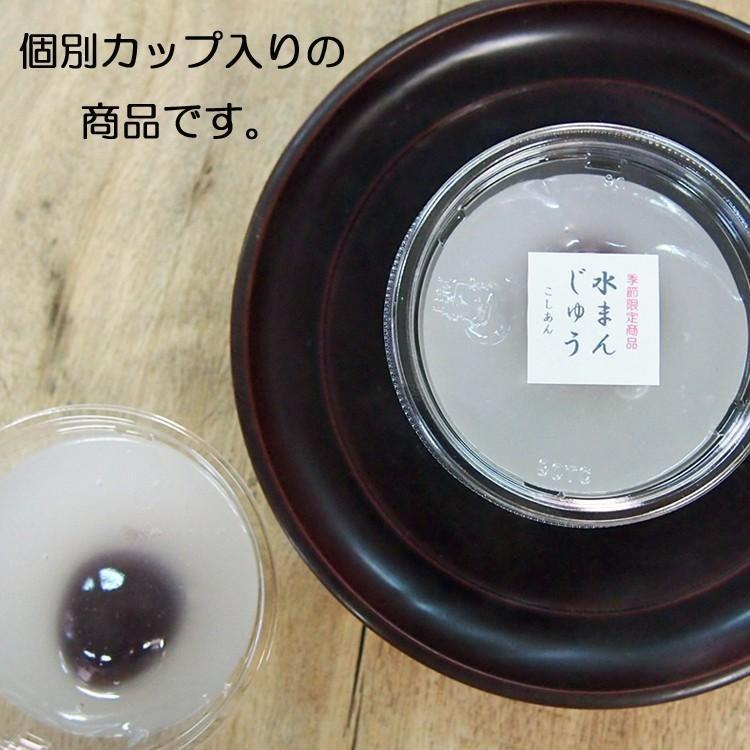 水まんじゅう 水ようかん 詰め合わせ 6個入り ご自宅用箱入り ギフト指定不可 gomadaremochi 03