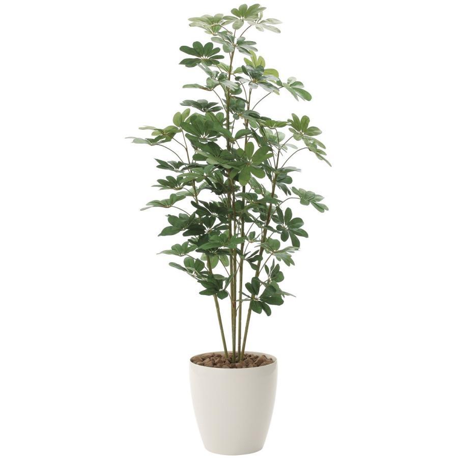 カポック 180cm /造花の観葉植物 光触媒(空気浄化) インテリア・グリーン鉢植え /158A300-3617|goodfellow|03