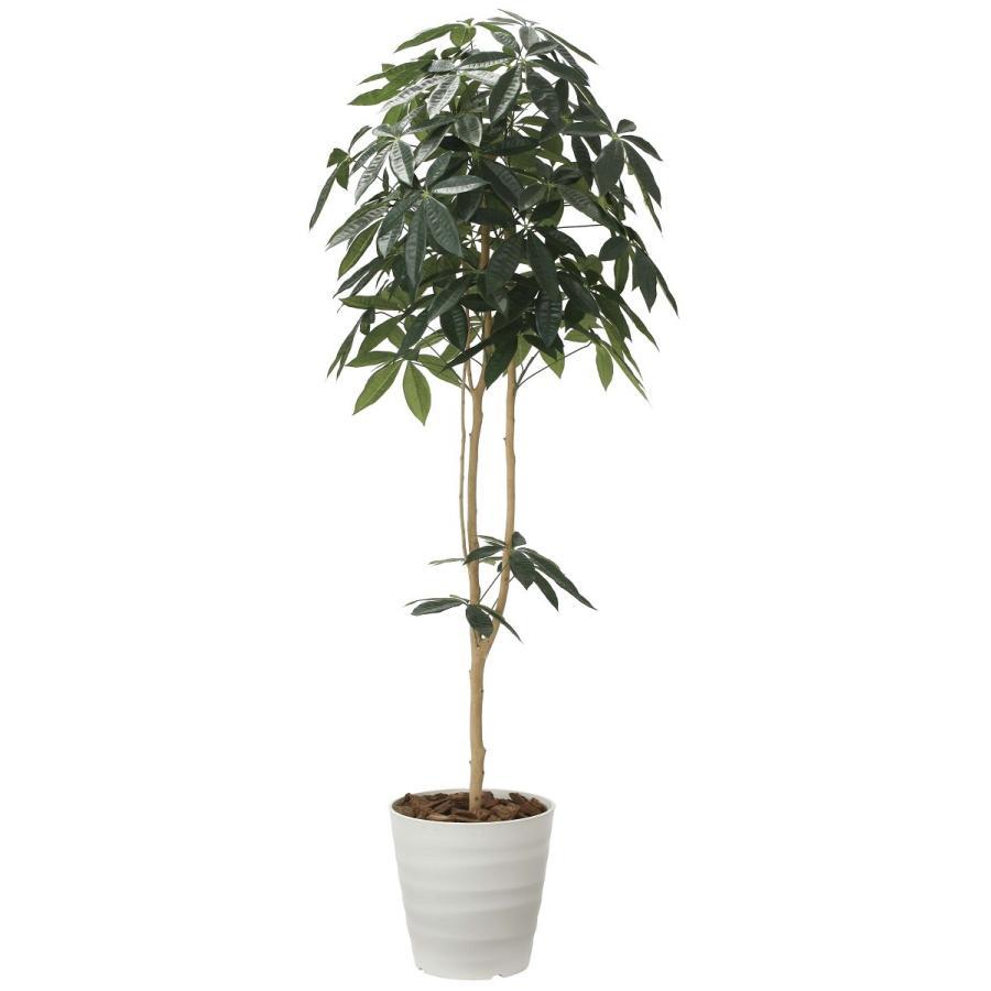 造花 観葉植物 「パキラ-DZ 180cm」 光触媒 空気清浄 インテリア グリーン 30 goodfellow