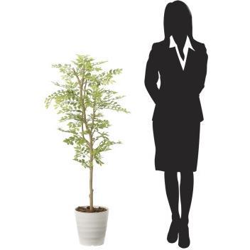 造花 観葉植物 「ゴールデンリーフ 125cm」 光触媒(空気浄化) インテリア・グリーン 34|goodfellow|03