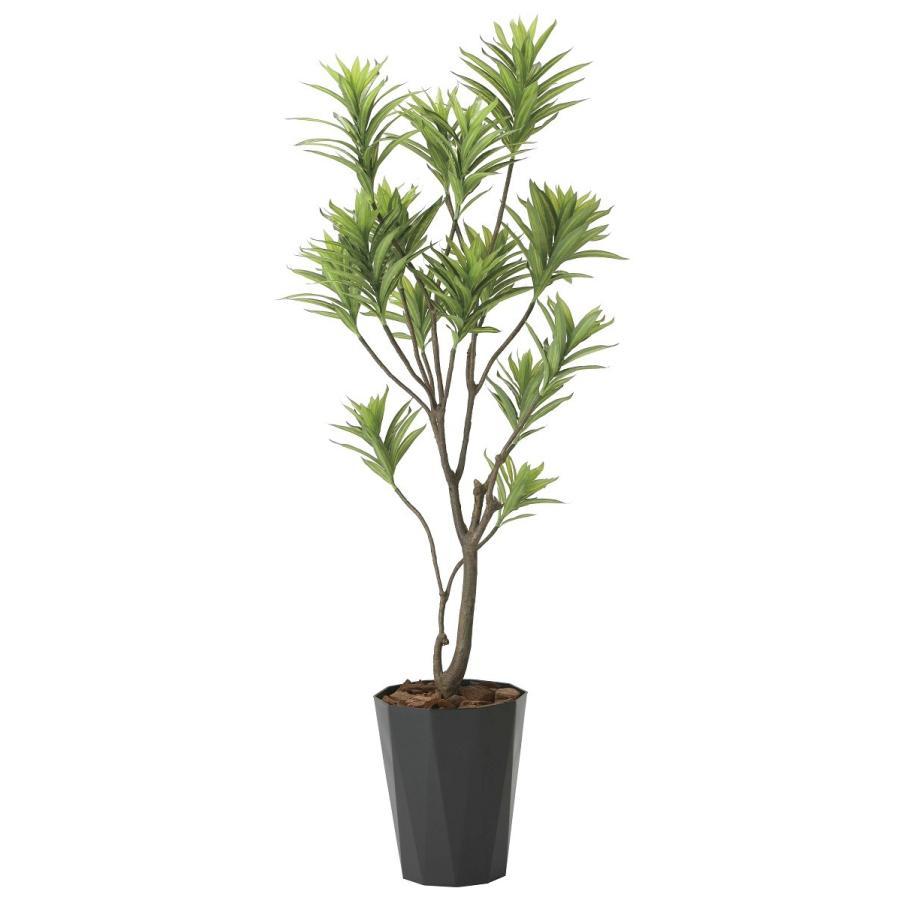 造花 観葉植物 「フレッシュ・ドラセナ 180cm」 光触媒 空気清浄 インテリア グリーン 38|goodfellow