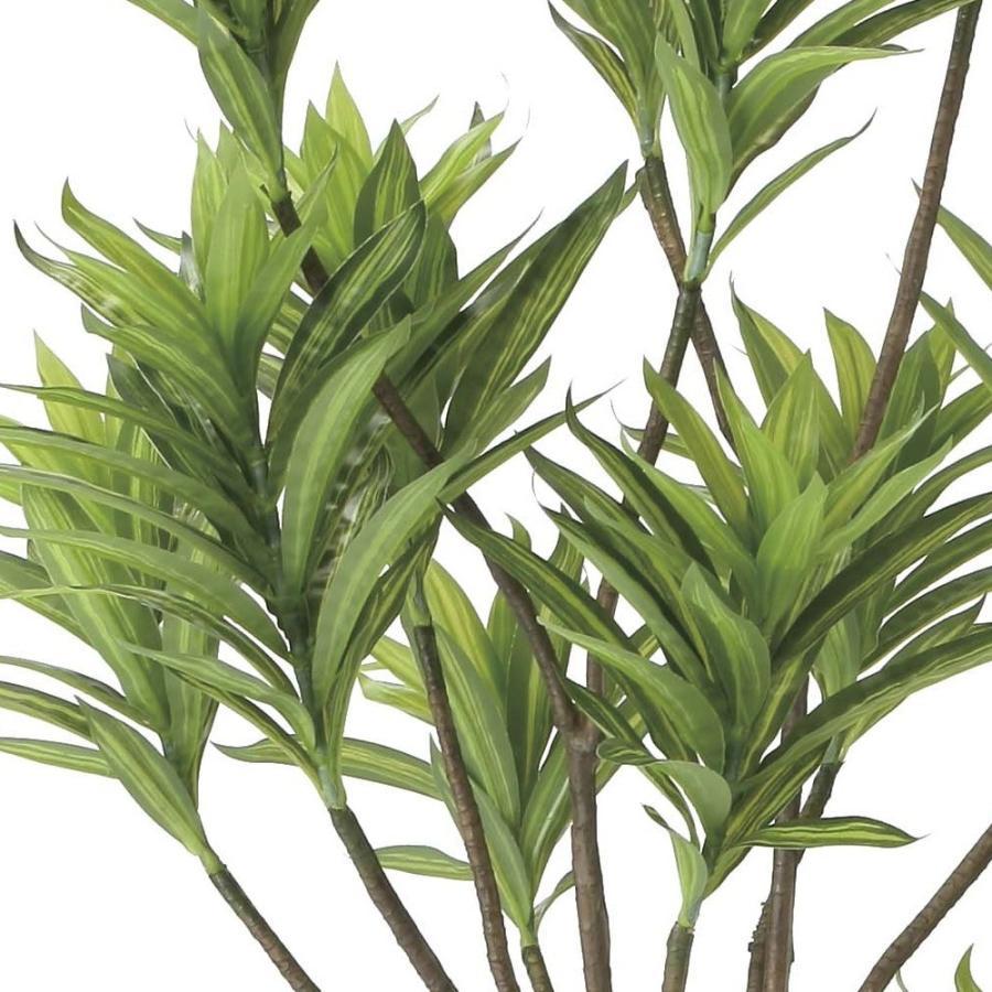 造花 観葉植物 「フレッシュ・ドラセナ 180cm」 光触媒 空気清浄 インテリア グリーン 38|goodfellow|02