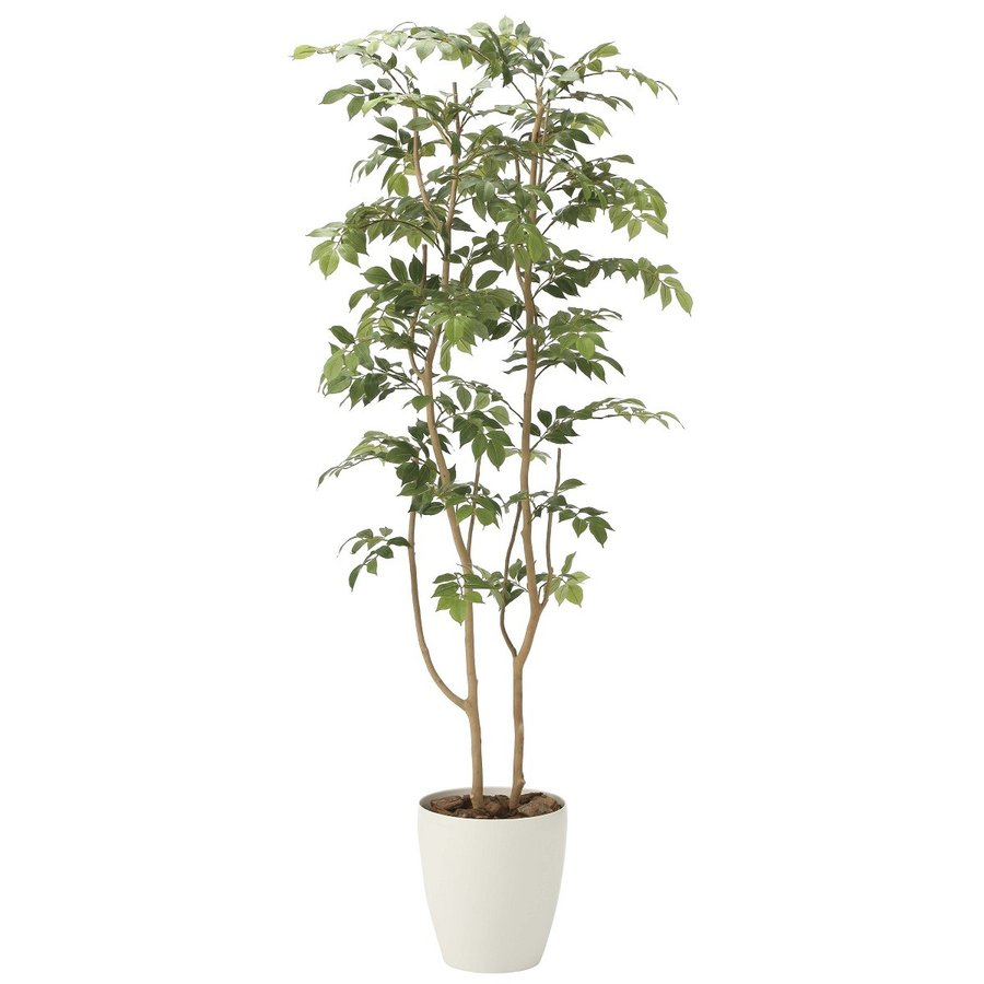 造花 観葉植物 「マウンテンアッシュ 160cm」 光触媒(空気浄化) インテリア・グリーン 34|goodfellow