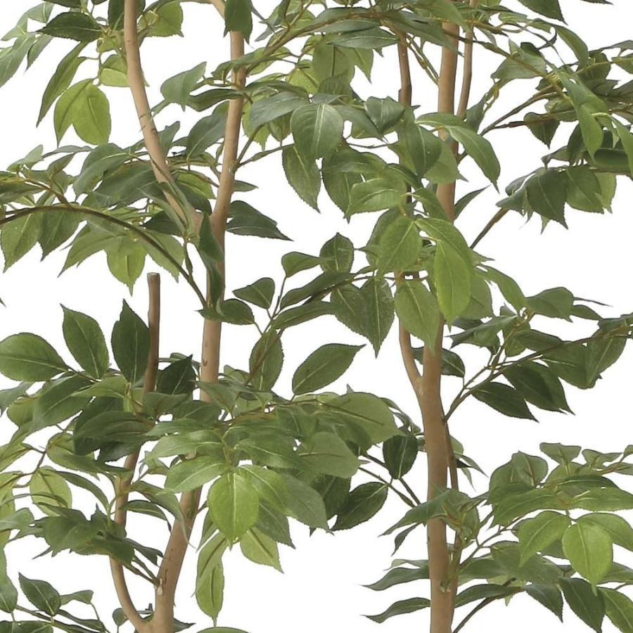 造花 観葉植物 「マウンテンアッシュ 160cm」 光触媒(空気浄化) インテリア・グリーン 34|goodfellow|02
