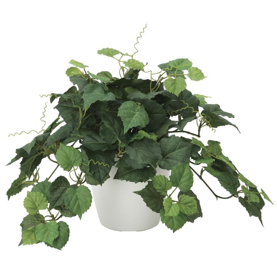 造花 観葉植物 「グレープ 30cm」 光触媒 空気清浄 インテリアグリーン 60 goodfellow