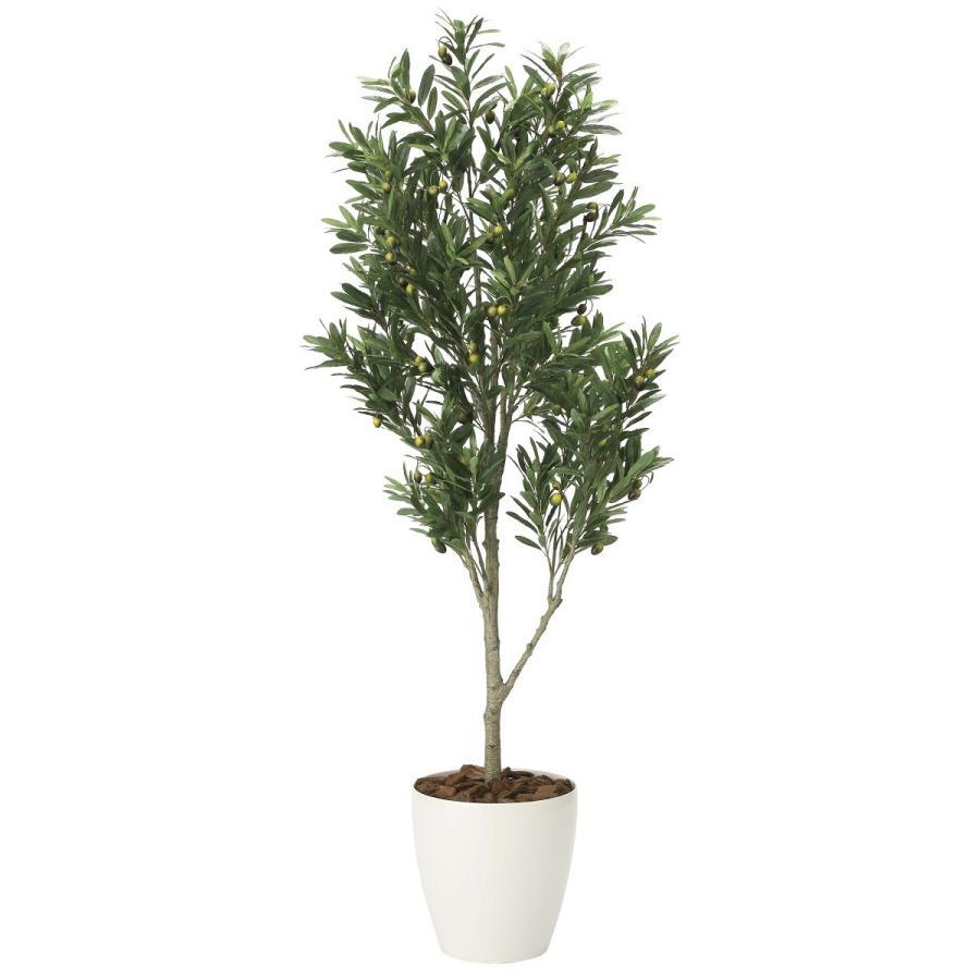 造花 観葉植物 「オリーブ・ツリー 165cm」 光触媒(空気浄化) インテリア・グリーン 42 goodfellow