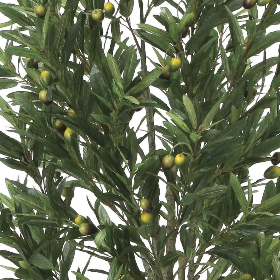 造花 観葉植物 「オリーブ・ツリー 165cm」 光触媒(空気浄化) インテリア・グリーン 42 goodfellow 02