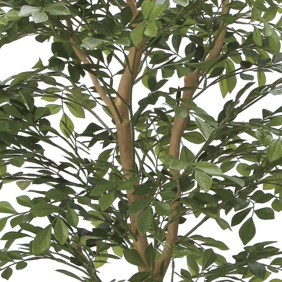造花 観葉植物 「トネリコ 160cm」 光触媒(空気浄化) インテリア・グリーン 40|goodfellow|02